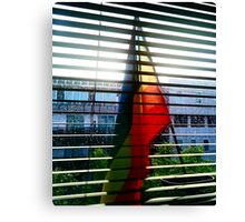 I am cool and colourful Canvas Print