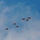 RAAF Roulettes over Hobart Tasmania 15 Sep 2014 by Odille Esmonde-Morgan