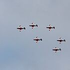 RAAF Roulettes over Hobart, Tasmania #2 - 15 Sep 2014 by Odille Esmonde-Morgan