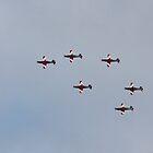 RAAF Roulettes over Hobart, Tasmania #2 - 15 Sep 2014 by Odille Esmonde-Morgan