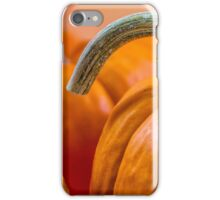Pumpkin with graceful stem iPhone Case/Skin