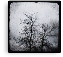 Winter Tree 1 Canvas Print
