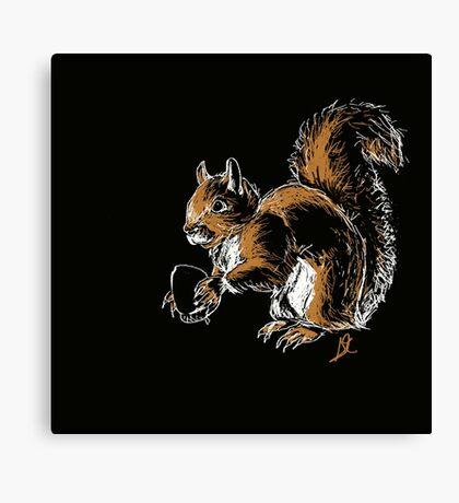 Nature Squirrel Canvas Print