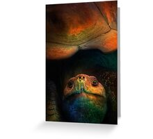 Turtle Oil Painting Acrylic Animals Reptile Wild life nature sea landscape Greeting Card