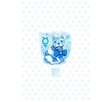 Sailor MercuFrenchie (Water Drop Pattern) Photographic Print