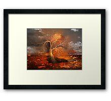 Autumn has Arrived Framed Print