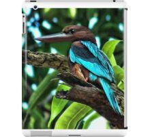 <º))))>< KINGFISHER AVAILABLE AS GORGEOUS PICTURE & PILLOW & TOTEBAG-& TABLET <º))))>< iPad Case/Skin