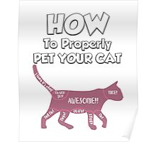 How to Properly Pet Your Cat Poster