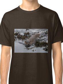 Shetland Otter Classic T-Shirt