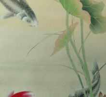 Koi Fish With Lotus Sticker