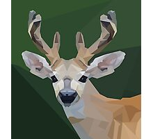 Minimalist Deer- King of the Forest Photographic Print