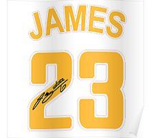 Lebron James 23 NBA Poster
