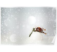 Christmas Decoration with White Bauble Poster