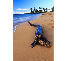 North Shore Photographic Print
