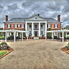Boone Hall Plantation  by John  Kapusta