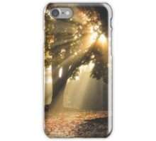 Rays of Gold iPhone Case/Skin