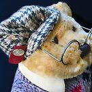 Professor Bear by Heather Friedman