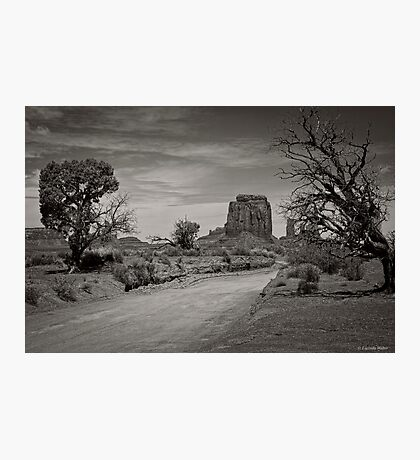 Walk With Me Photographic Print