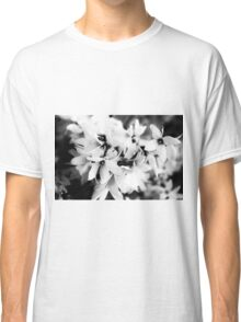 Forsythia in BW Classic T-Shirt