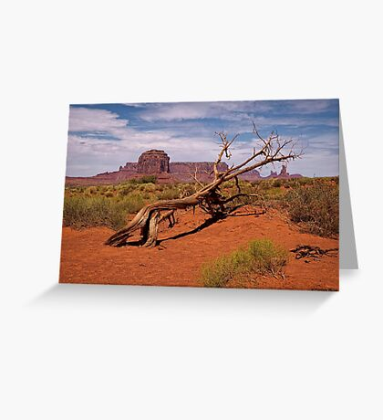 Gnarled Beauty of the Valley Greeting Card