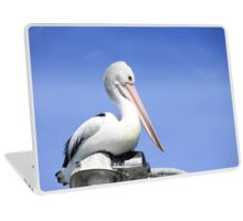 Pelly-Can-can-can Laptop Skin