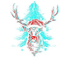 Christmas - Rudolph The Red Nose Reindeer Photographic Print