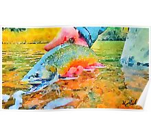 Rainbow Trout Release Poster