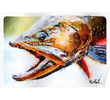 Cut Throat Trout  Poster