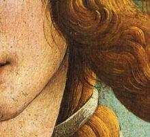 Birth of Venus - Botticelli  Sticker