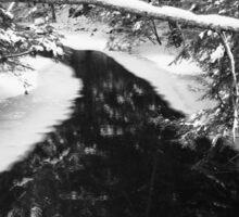 Dark Winter River Sticker