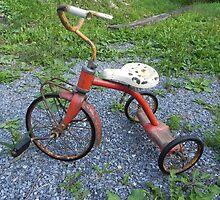 The Old Trike by Martha Medford