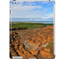 Low Tide Rickett's Point ll iPad Case/Skin
