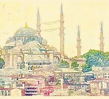 Blue Mosque, Istanbul, Turkey by Scott Anderson