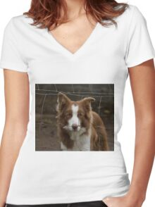 Collie Behind Fence Women's Fitted V-Neck T-Shirt
