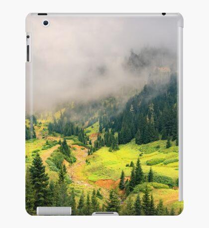 Sunny Valley iPad Case/Skin