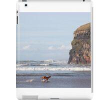 blur motion of dog running by cliffs iPad Case/Skin