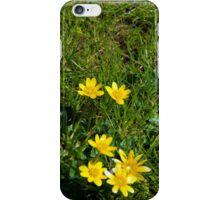 buttercups in a lush green garden lawn iPhone Case/Skin