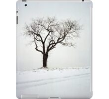 Old Tree in the Snow iPad Case/Skin
