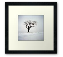 Old Tree in the Snow Framed Print