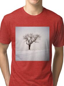Old Tree in the Snow Tri-blend T-Shirt