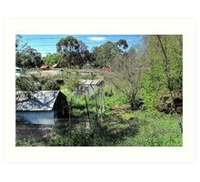 Ceres Environmental Park 2, Melbourne, Australia Art Print