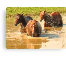 """Horses with Attitude no. 5, 'Hey, Youse Guys, I'm Still Talkin'""... prints and products        Canvas Print"