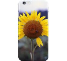 Sunflower's Last Days iPhone Case/Skin