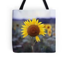 Sunflower's Last Days Tote Bag