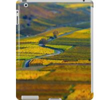 Aerial tilt-shift view of geometrical fields of grape, vinery in Alsace iPad Case/Skin