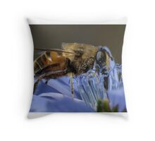 hoverfly on blue flower Throw Pillow