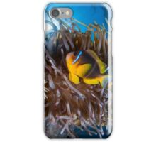 Under water photography of a Red Sea iPhone Case/Skin