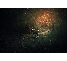 The Forest Guardian Photographic Print