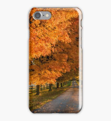 Bell Lane iPhone Case/Skin