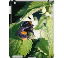 Curious Bee iPad Case/Skin
